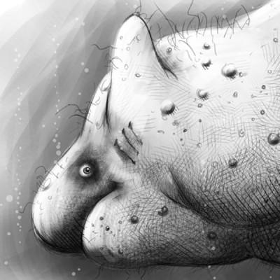 gesaesshai-ohne-tanga